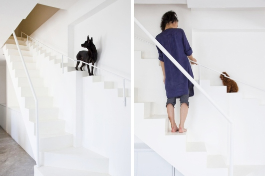 this-vietnamese-home-incorporates-a-second-dog-friendly-staircase-1